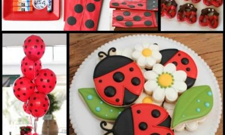 Ladybug Party: Little Lovebug Design and Ideas