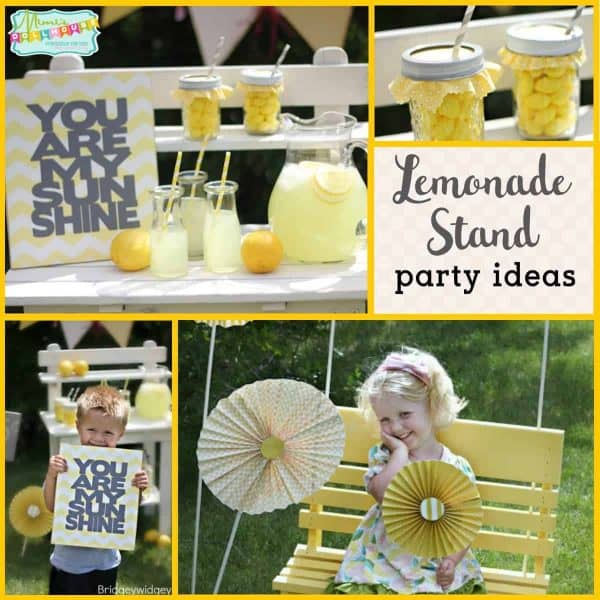 Lemonade Party: Pretty Lemonade Stand | Mimi's Dollhouse