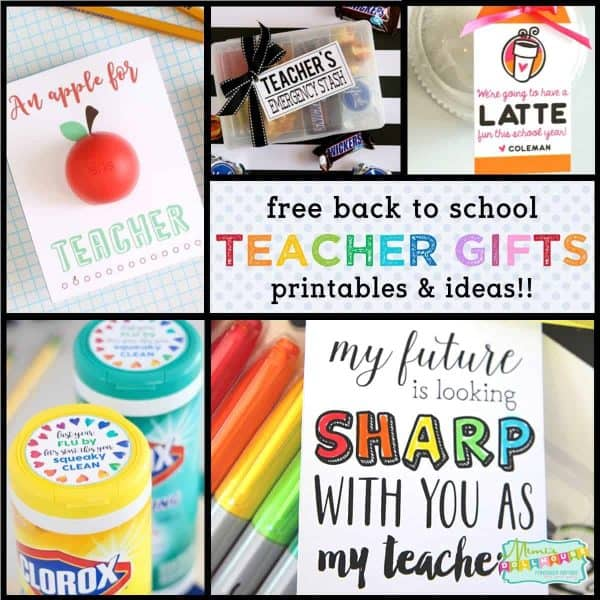 photograph relating to Free Printable Teacher Appreciation Tags called Back again in the direction of Higher education: Perfect Instructor Reward Strategies with Totally free Printables