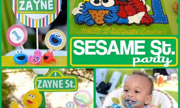 Sesame Street Party: Zayne's World