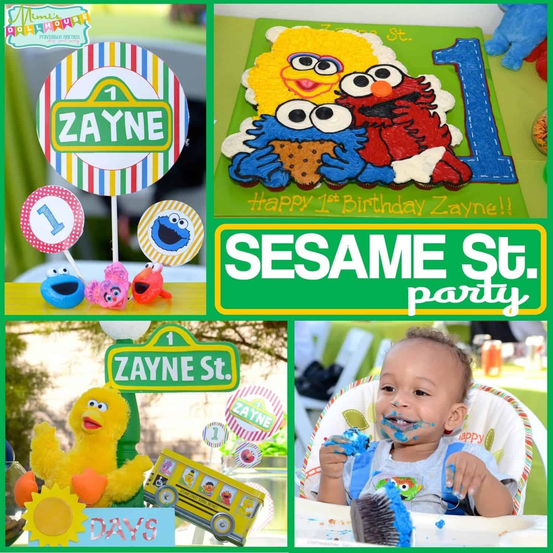 Sesame Street Party: Zayne's World