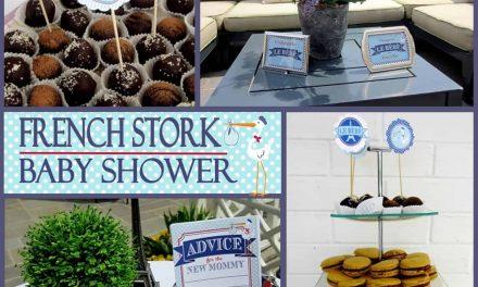 Stork Baby Shower: Special Delivery de le Bébé