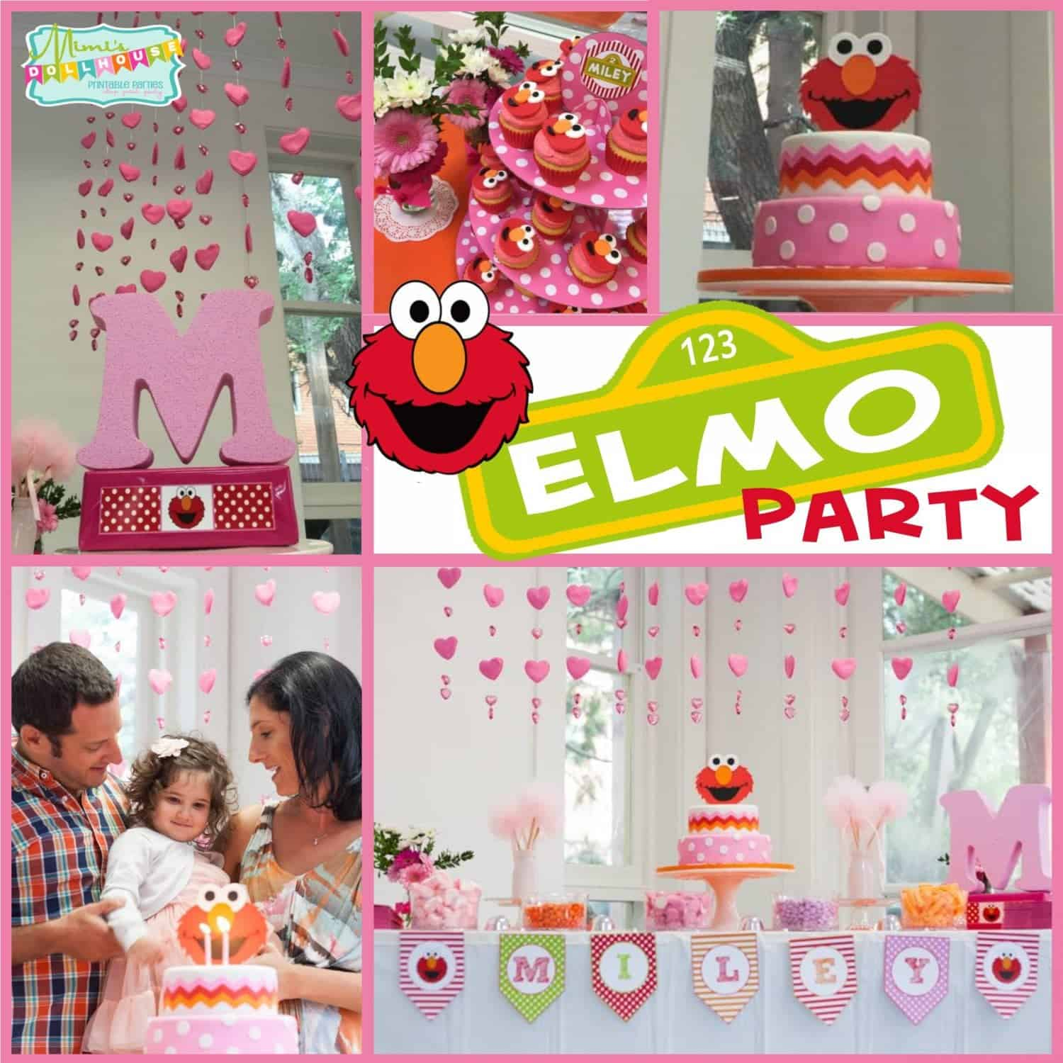 Elmo Party: Miley's Pretty Pink Elmo Party