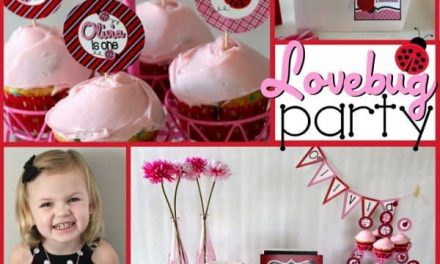 Lovely Ladybug Birthday Ideas + Supplies