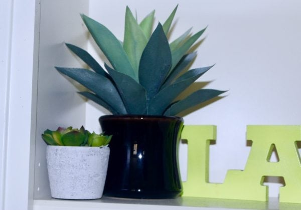 Decorating with Succulents: Add a little Green to your Home Decor.  Looking for a way to add plants into your home decor?  Today we are talking about decorating with succulents and ways to add them into your decor. #succulents #homedecor #diy #home