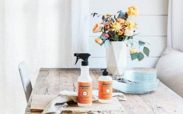 Grab your Free Mrs. Meyers Fall Cleaning Set