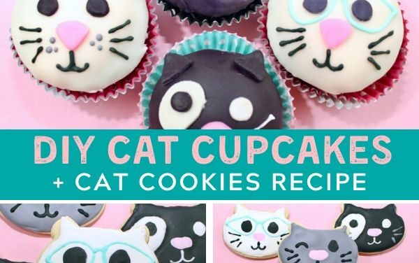 Purr-fect Cat Cupcakes + Cat Cookies Tutorial