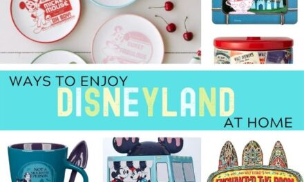 Ways to Enjoy Disneyland at Home
