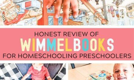 Wimmelbooks for Homeschooling Preschoolers