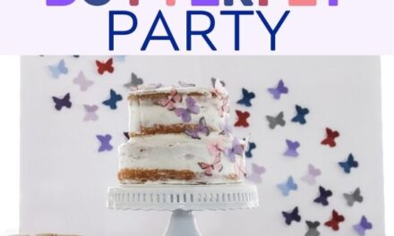 Simple + Stunning Butterfly Party Ideas