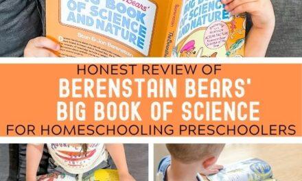 Teaching Preschool Science with The Berenstain Bears